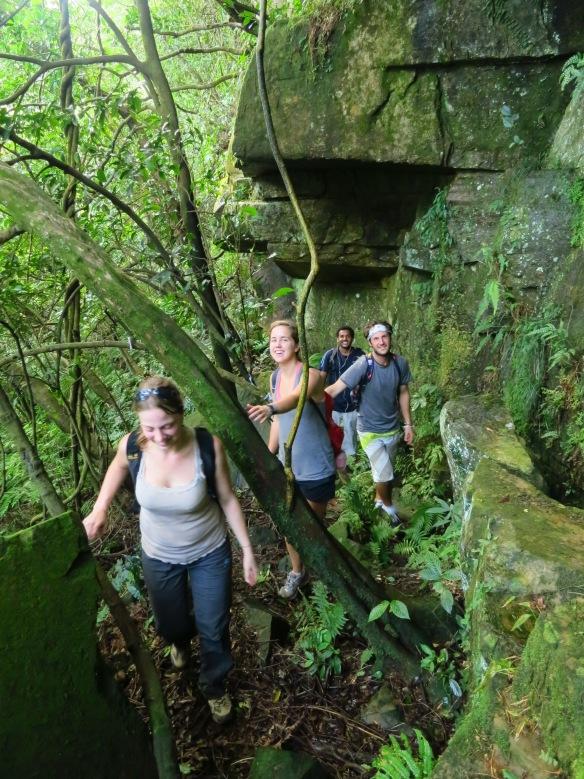 The trail to Jiadong Waterfall