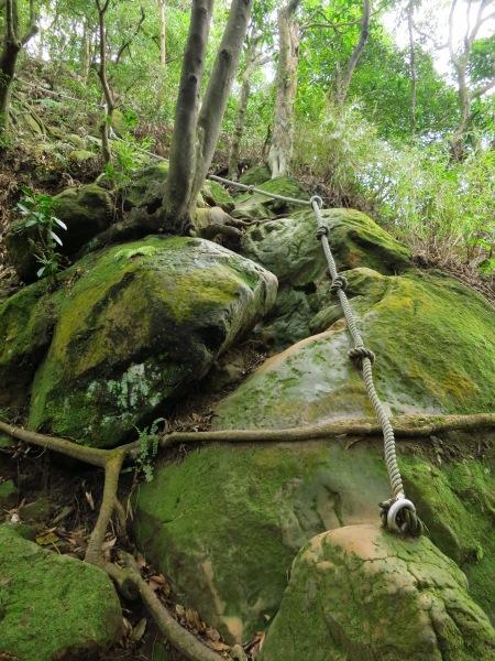 On one of the Luohan Strange Rocks