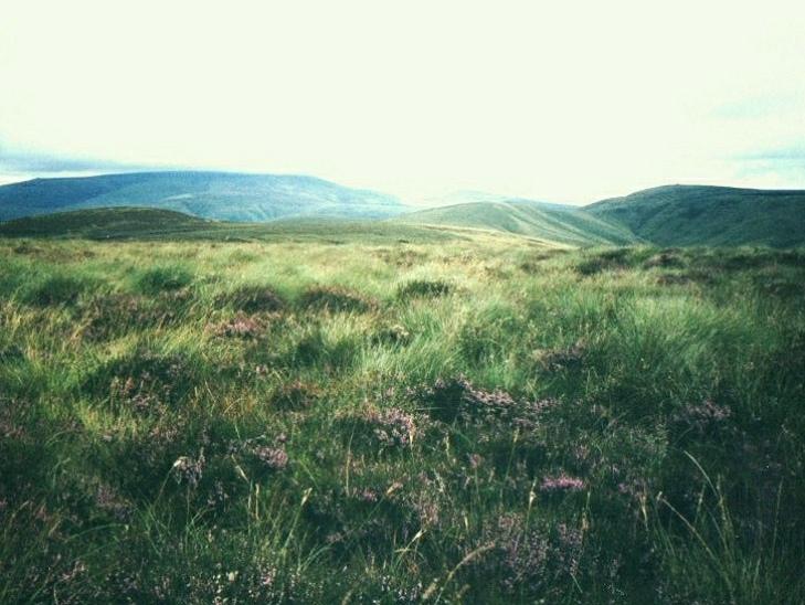 The high Pennine moors