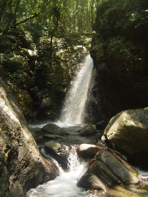 Little Forest Mountain Falls, above Cloud Forest Falls near Sanxia