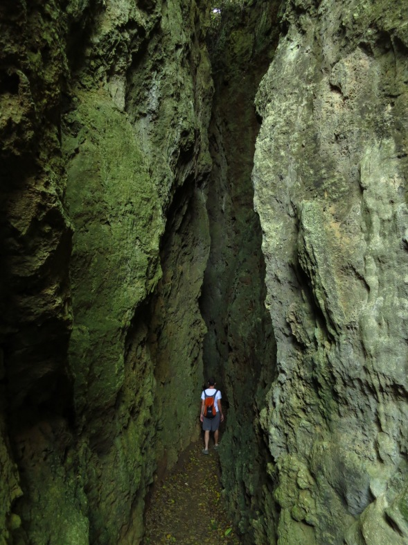 The 'Big Gorge'