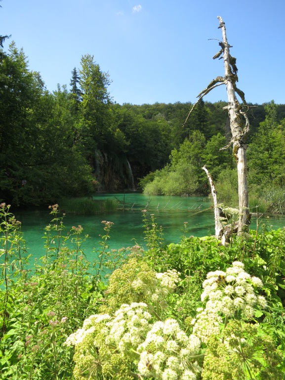 Plitvice Lakes isn't as gobsmacking as the similarly formed but much larger and more spectacular Jiuzaigou in China, but it's still an exquisitely beautiful place