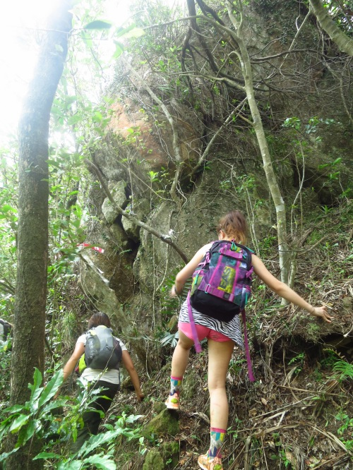 On the ridge trail to Mount Neipinglin