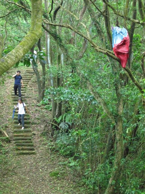 On the Thousand Step Ridge path