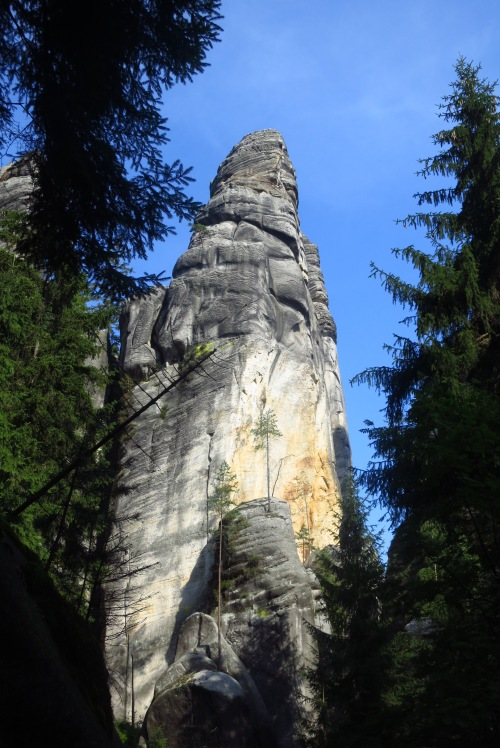 In the Adrspach Rocks