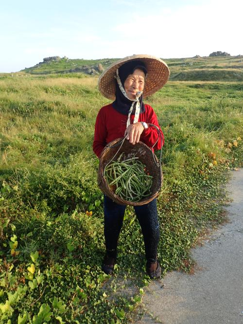 Hua Islander collecting wild beans near the island's north coast