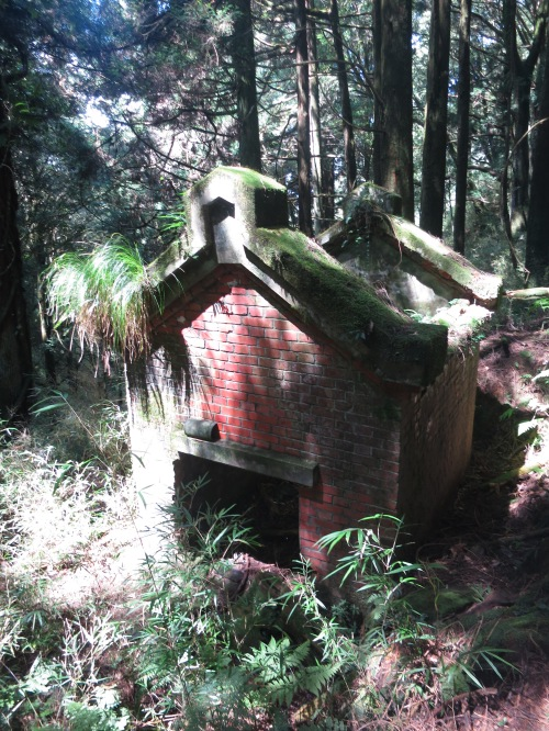 We never worked out what this ruin once was...