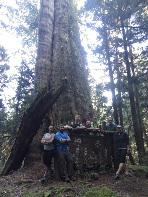The gang, at Mianyue Ancient Tree
