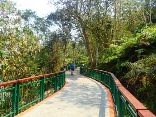 Sun Moon Lake cycle path