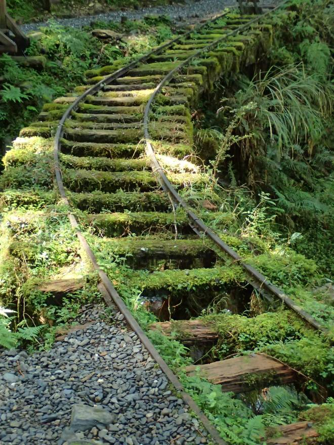 Disused logging railway tracks at Taipingshan, Yilan County