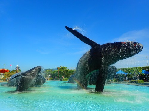 Museum of Marine Biology, Pingtung County