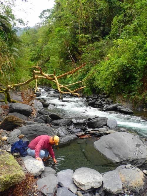Paigu Stream Hot Spring, Yilan County
