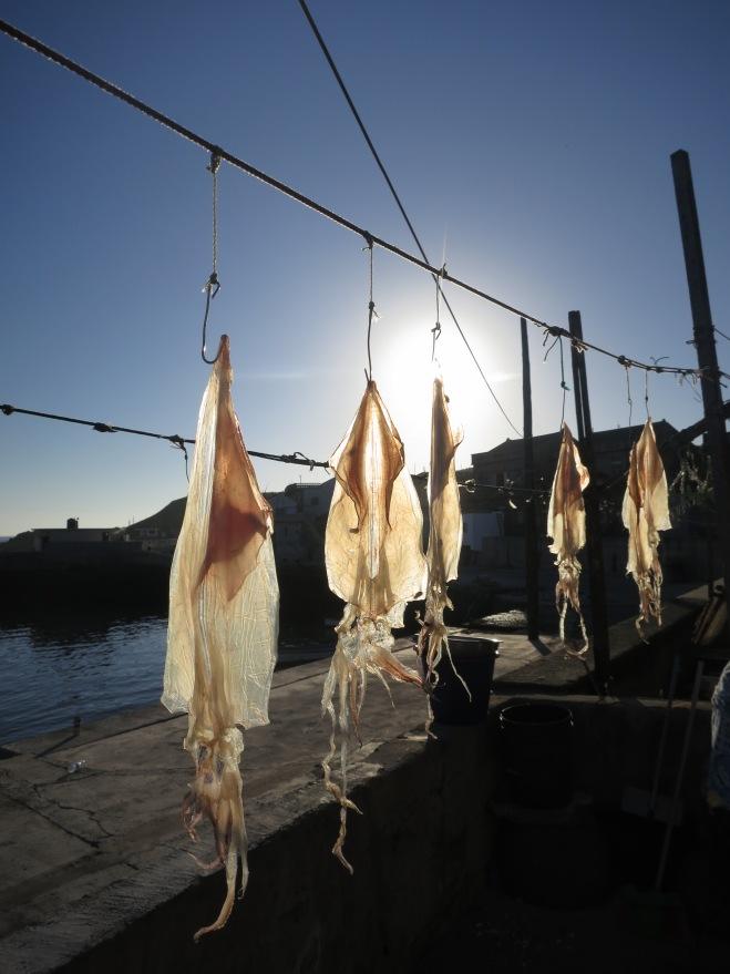 Drying fish on Hua Island, Penghu