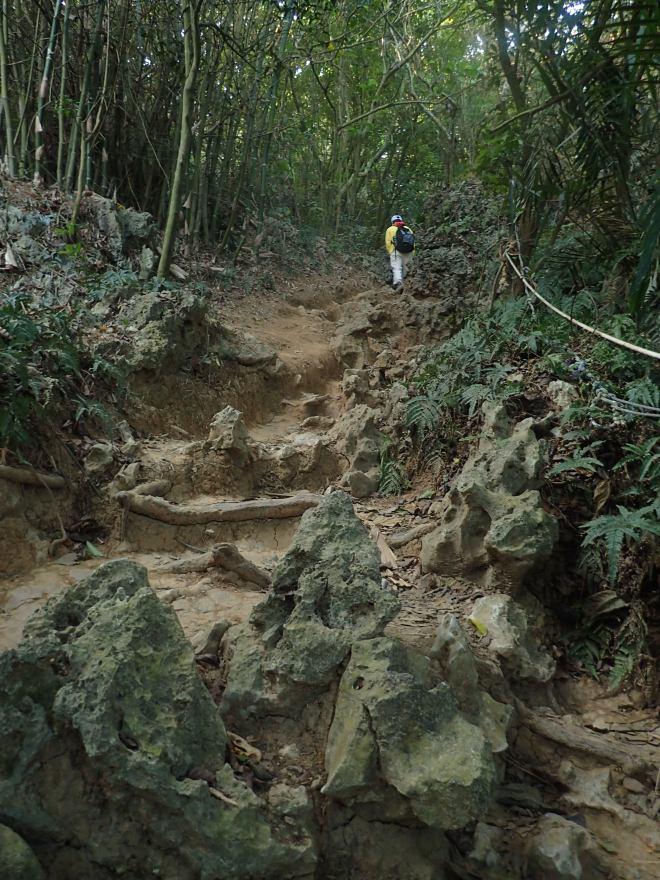 Hiking on Shoushan, Kaohsiung City
