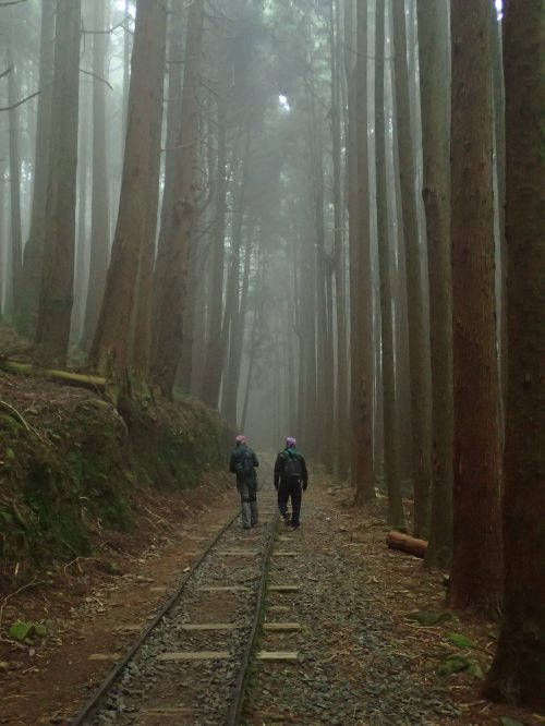 Tefuyie Old Trail, Chiayi County