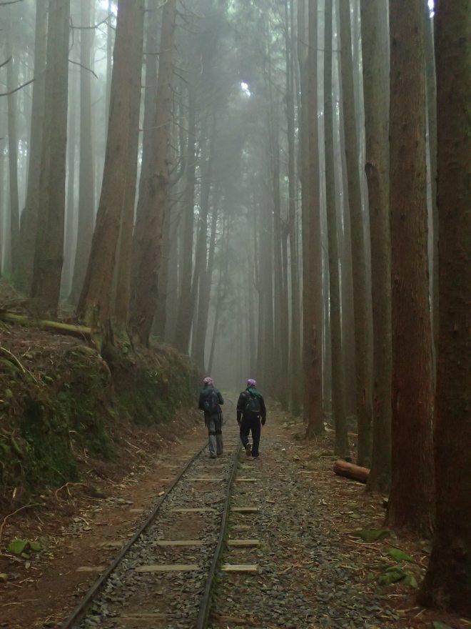 Tefuyie Old Trail, Chiayi County