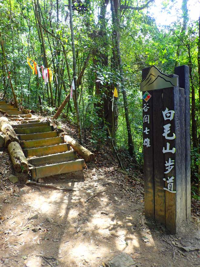 The trailhead for Mt. Baimao lies up a long, narrow road, which can be driven by scooters, shortening the hike by well over an hour