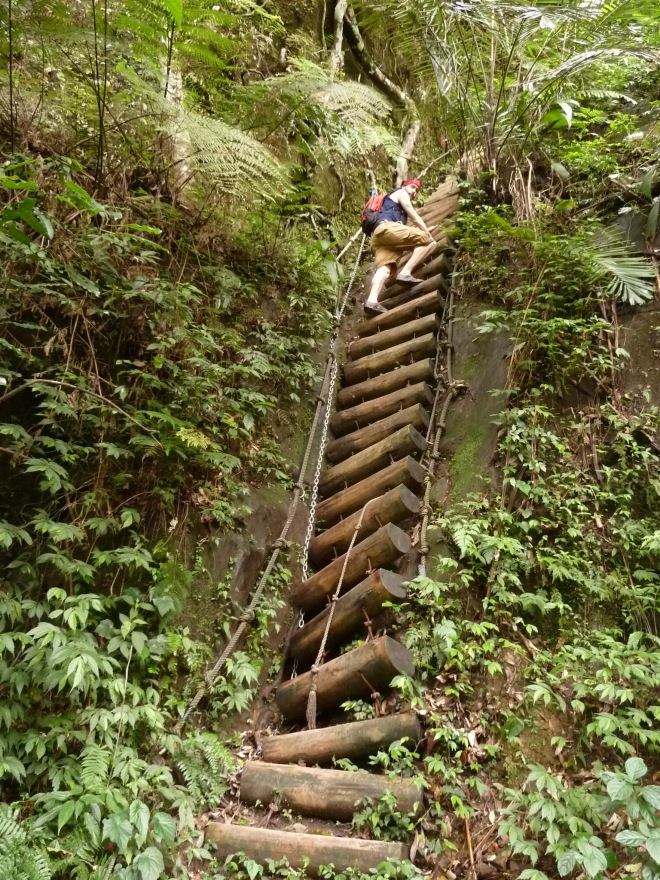This log rope-ladder that for many years climbed the rock face beside Sandiaoling Waterfall has now been replaced by an unsightly flight of metal stairs