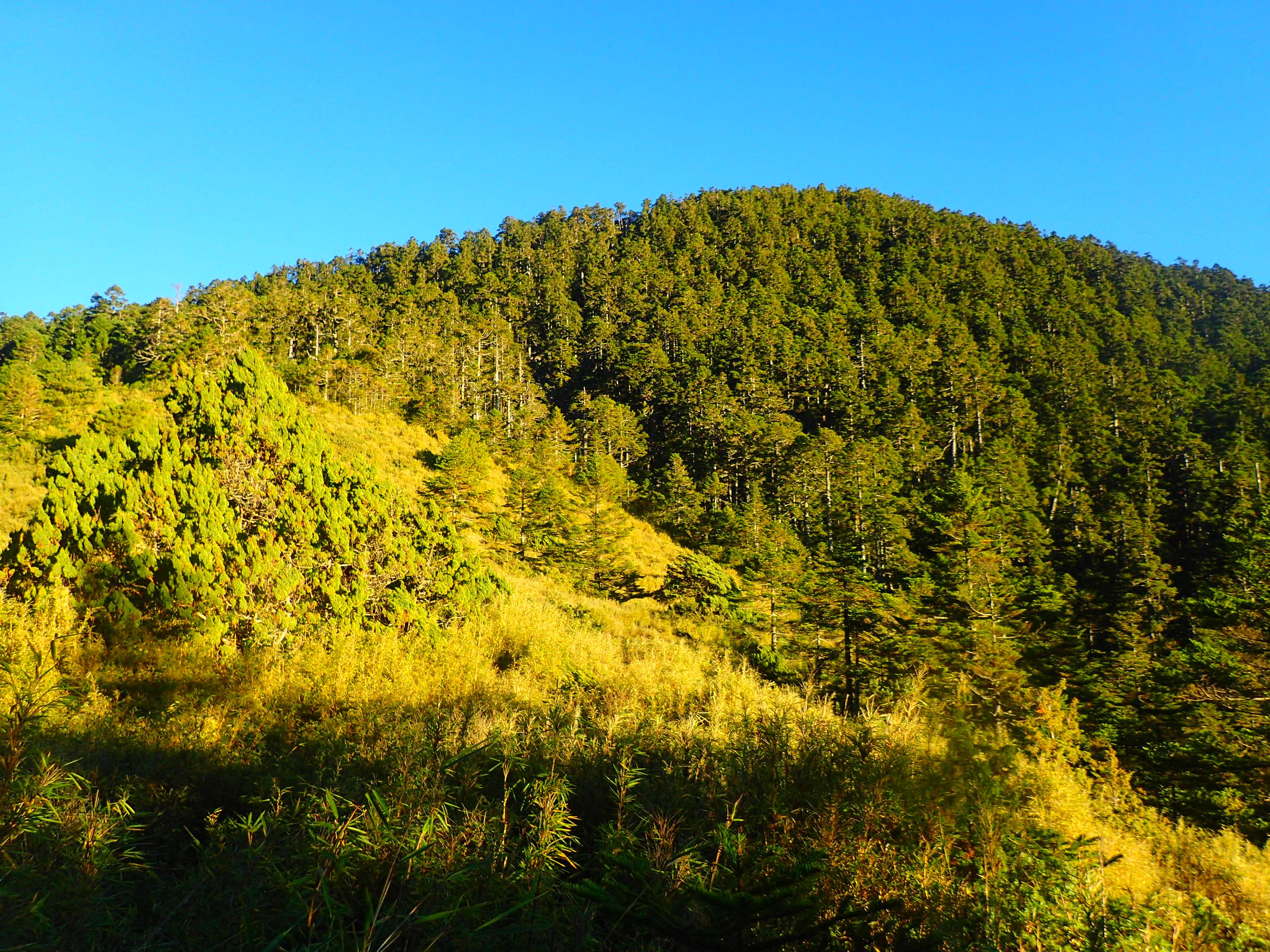 Mount Baiguda